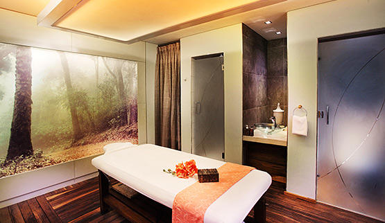 Sandton Hotels with spa facilities.