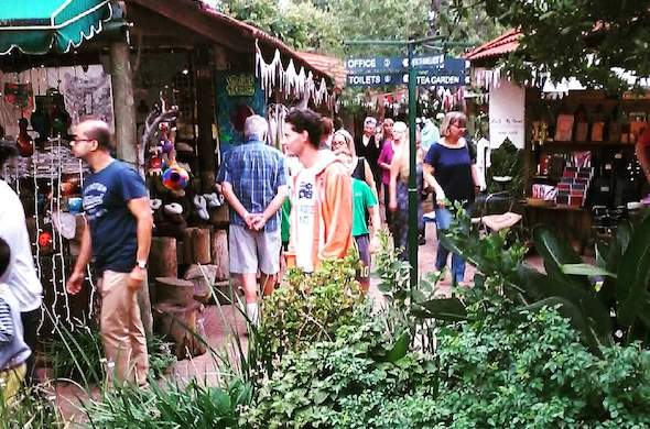 Fourways Farmers' Market ,Fourways market, things to this weekend ,things to do in sandton ,markets near me ,best markets fourways
